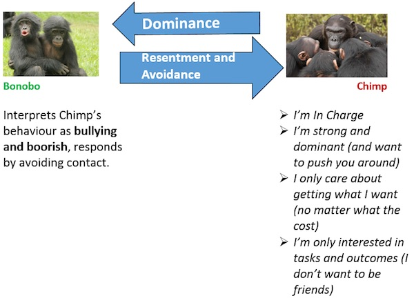 How a Bonobo Views a Chimp