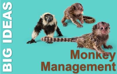 Monkey Management - William Oncken Jr's great insight
