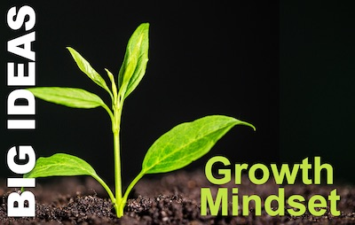 Growth Mindset: Putting it to Work